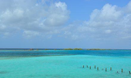 Bon Bini! Welcome to Aruba!